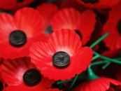 Where to pay your tribute in Kingston on Remembrance Day (Sunday 8 November 2015)